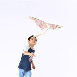 STEM Kit Experiment For Kids At Home – Kit #3 : Rubber Band Bird Kit (1)
