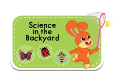Science & Math Program For Toddlers 3 | ALFAandFriends