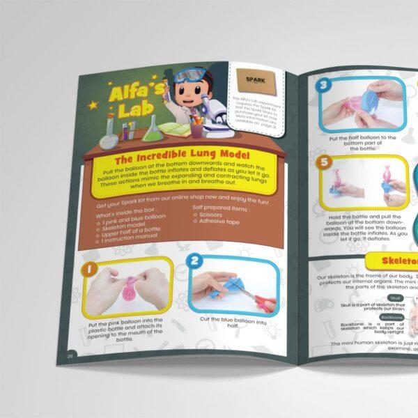 STEM Kit Experiment For Kids At Home – Kit #6 : Lung Kit And Skeleton Model (3)