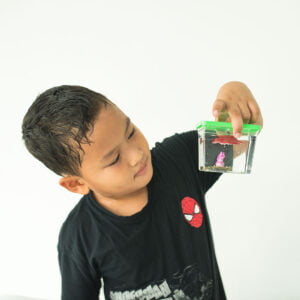STEM Kit Experiment For Kids At Home | Kit #38